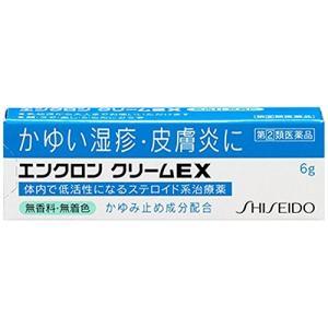エンクロン クリームEX 6g 定形外郵便 【指定第2類医薬品】 【税制対象商品】 tk10|papamama
