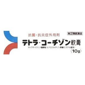 テトラ・コーチゾン軟膏 10g メール便 指定第2類医薬品