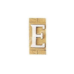 E3271-E 表札 ネームプレート Essence ネームタイル「E」(大文字) 表札エクステリア メール便対応可|papasalada