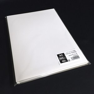 アストル-T22.5kg(260g/m2)A4サイズ名刺用紙 40枚 paper-shop