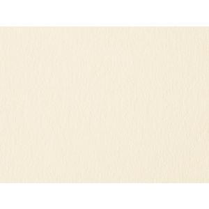 NTラシャ スノーホワイト 100K A4 10枚 paperchase
