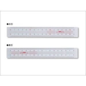 PAL/イカリボシ パルカラー定規・目盛16センチ PR-18 ポスト投函配送対応