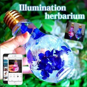 光るハーバリウム 電球型 LED付きハーバリウム イルミネーション 電池付き 母の日  誕生日プレゼント 花 結婚祝い 新築祝い プリザーブドフラワー|paravoce