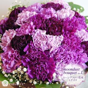 古希 紫の花 紫のカーネーション ムーンダストの花束(L) 36本の花束 生花 珍しい花 青い花 古希祝い サントリーフラワーズ|paravoce