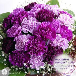 ムーンダストの花束(M) 24本の花束 誕生日プレゼント 古稀祝い お祝い 花束 珍しい花 青い花 紫のカーネーション もらって嬉しいギフト|paravoce