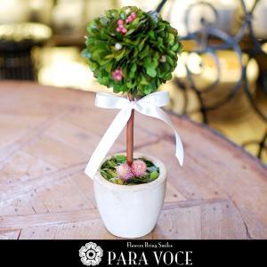 プリザーブドフラワー 誕生日プレゼント ブリザードフラワー 開店祝い 新築祝い 開店祝い 結婚祝い インテリア雑貨 母の日ギフト トピアリー(M)|paravoce