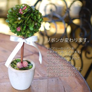 プリザーブドフラワー 誕生日プレゼント ブリザードフラワー 開店祝い 新築祝い 開店祝い 結婚祝い インテリア雑貨 母の日ギフト トピアリー(M)|paravoce|02