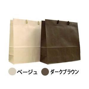 ショッピングバッグ:中 当店ではラッピング作業は致しません。 【香水フレグランス】|parfumearth