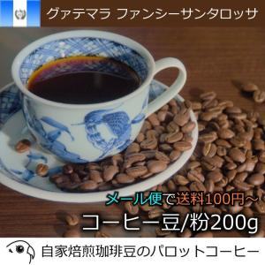 コーヒー豆 グァテマラ ファンシーサンタロッサ 200g 自家焙煎