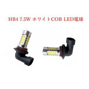 HB4 LED バルブ 車用LEDヘッドライトオートフォグランプ 12V 2個 ZERO GX1|partsaero