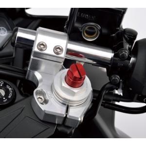 POSH 066170-03 セパレートハンドルキット シルバー メーカー品番:066170-03 1セット|partsdirect