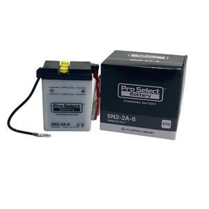 プロセレクトバッテリー Pro Select Battery オートバイ用6Vバッテリー HONDA MBX80インテグラの商品画像 ナビ
