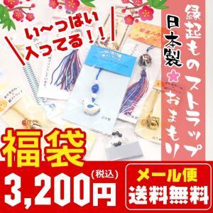 (限定福袋)(日本製 天然石 縁起ものストラップ おまもり(3200円) /メール便送料無料/ 縁起物  パワーストーン 厄除け いい買物の日 福袋|partsworldjp