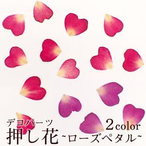 デコパーツ(31.押し花 ローズペタル) 花 ドライフラワー 薔薇 バラ 赤 レッド ピンク 紫|partsworldjp