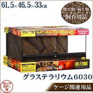 取寄品  爬虫類 両生類用ケージ グラステラリウム 6030