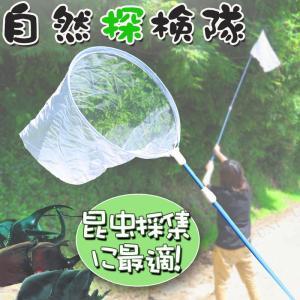 ネイチャーエクスプローラー虫網伸縮 昆虫採集 虫取り網 伸縮 虫捕り網 昆虫網 捕虫網 捕獲網 アミ
