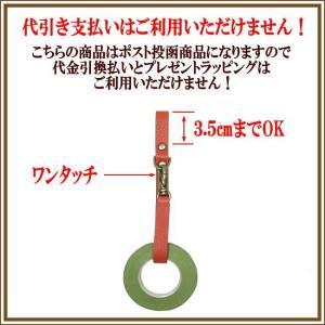 テープホルダー1 フローリスト シザーケース 花屋シザーケース|partymix|02