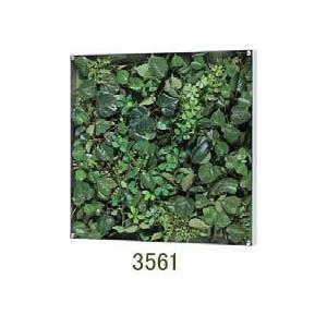大感謝価格薄型BOXフレーム ウォールグリーン 3561メーカー直送品。代引不可・同梱不可・返品キャンセル・割引不可観葉植物 壁掛け ディスプレイ 飾|parusu