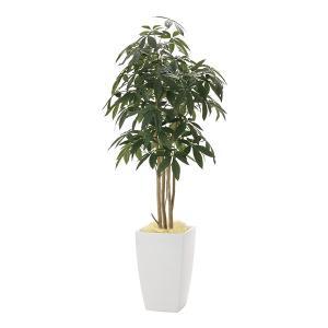 メーカー直送 アーバンパキラ1.8 941A600 光触媒人工植物 光の楽園 2019 W70×D70×H180cm|parusu