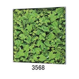 大感謝価格薄型BOXフレーム ウォールグリーン 3568or3569メーカー直送品。代引不可・同梱不可・返品キャンセル・割引不可観葉植物 壁掛け ディスプ|parusu