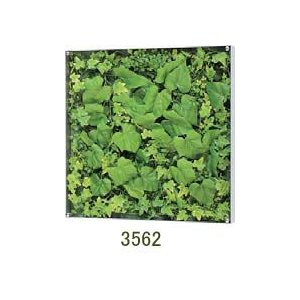 大感謝価格薄型BOXフレーム ウォールグリーン 3562メーカー直送品。代引不可・同梱不可・返品キャンセル・割引不可観葉植物 壁掛け ディスプレイ 飾|parusu