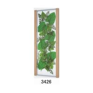 大感謝価格薄型インテリアグリーン 3426メーカー直送品。代引不可・同梱不可・返品キャンセル・割引不可観葉植物 壁掛け ディスプレイ 額装 飾る 雑|parusu