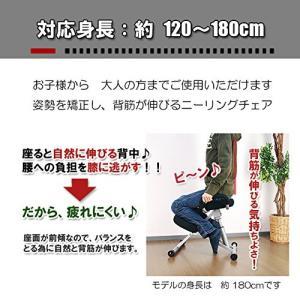 (外せる) 背凭れ付き ニーリング チェア 子供から大人まで姿勢矯正 バランス |pascal-japan|06