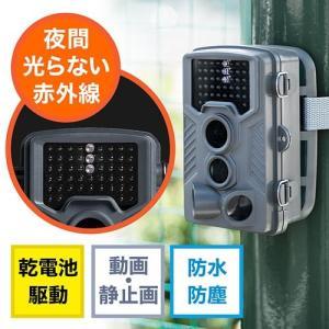 防犯カメラ トレイルカメラ セキュリティー ハンティングカメラ 自動撮影 写真 動画 屋外 屋内 940nm不可視赤外線LED内蔵 乾電池式 防水防塵IP54|paso-parts