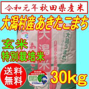 あきたこまち特別栽培米  玄米 30kg お米 秋田県産 2...