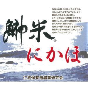 【28年産新米】秋田県産  特別栽培米 ササニシキ 30kg 1等玄米(送料込み)