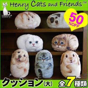 Henry Cats (ヘンリーキャット) 犬 猫 クッション 大 全7種類 HenryCats&Friends|passo