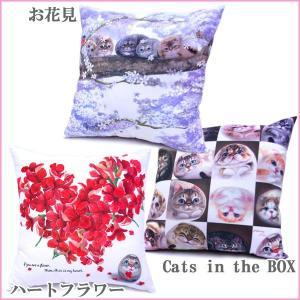 ヘンリーキャット 角型クッション 45cm 猫と一緒にお昼寝 全3種類 Henry Cats & Friends|passo