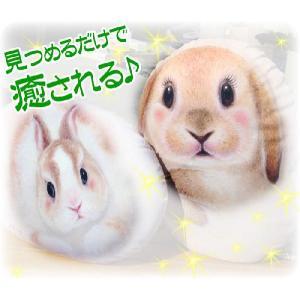 ヘンリーキャット クッション 大 ウサギ型 ロビー・ルビー Henry Cats & Friends|passo