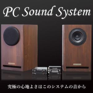 PC SOUND SYSTEM サウンドシステム PC用 スピーカー アンプ DAC ケーブル