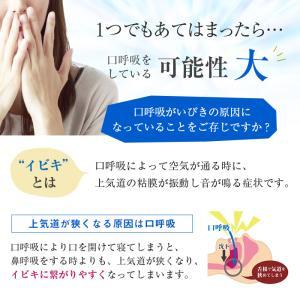 パタカラ プレミアム いびき 治し方 いびき防止 いびき対策 鼻呼吸器具 口呼吸 治し方 グッズ マウスピース 矯正 patakara 04