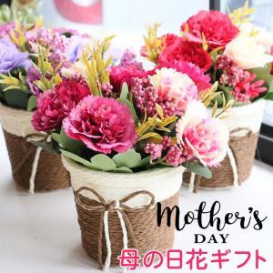 母の日 あすつく プレゼント 実用的 カーネーション鉢