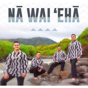 Na Wai 'Eha / Na Wai 'Eha - ナー・ヴァイ・エハー 【メール便可】|pauskirt