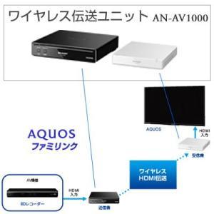 シャープ ワイヤレス伝送ユニット AN-AV1000