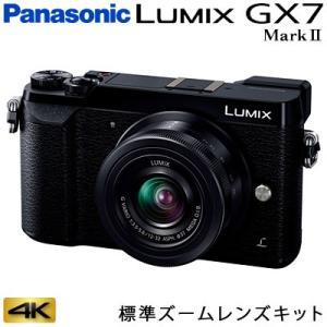 パナソニック ミラーレス一眼カメラ ルミックス LUMIX Gシリーズ GX7MK2K 4K 標準ズ...