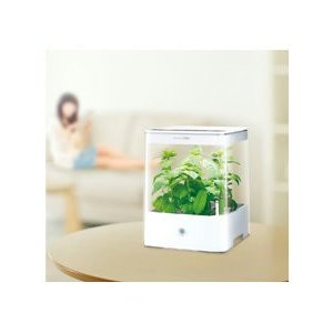 【送料無料】家庭用水耕栽培器 グリーンファーム キューブ UH-CB01G-W(ホワイト) ユーイング