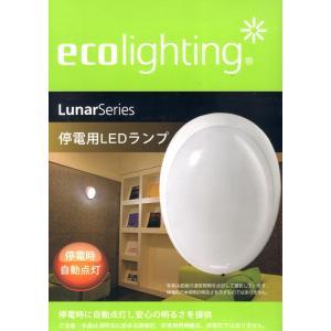 停電時自動点灯 白色LEDランプ ecolighting