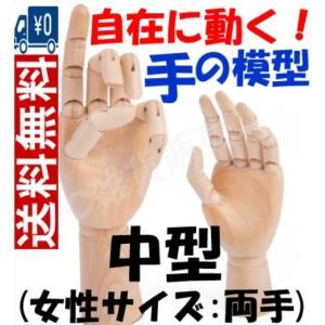 マネキン両手セット 関節付き自在に動く手の模型(中型:女性サイズ) 模写/知育/教育用途