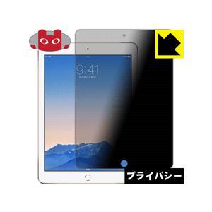 Privacy Shield iPad Air 2