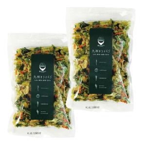 九州ドライベジ 乾燥野菜 九州産 野菜&わかめ ミックス 100g 2袋入り