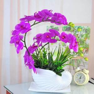 アートフラワー 胡蝶蘭 ほら貝鉢セット フェイクグリーン 造花 リアル再現 観葉植物 インテリア スワッグ イミテーション ディスプレイ|peachy