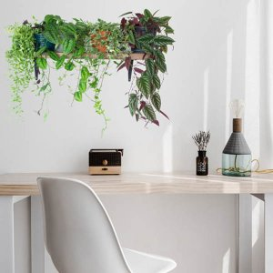 ウォールステッカー 観葉植物 棚 ガーデンラック トリックアート インテリアシール 壁デコレーション 北欧風 DIY リビング|peachy