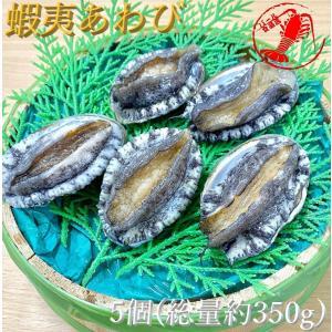 (活)蝦夷あわび5個(総量約350g)【鮑 アワビ】|pearlshokuhinten