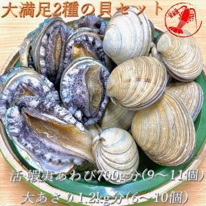 (活)蝦夷鮑9~11個(総量700g) 大あさり1.2kg分(8~10個)大満足2種の貝セット /【あわび アワビ 大アサリ】|pearlshokuhinten