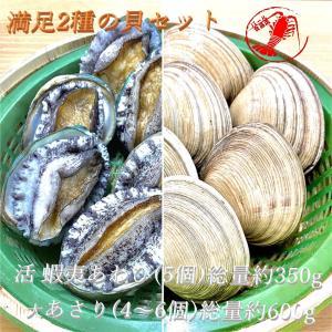 (活)蝦夷あわび5個(約350g)/大あさり4〜6個(600g) 満足2種の貝セット【鮑 あわび アワビ 大アサリ】|pearlshokuhinten