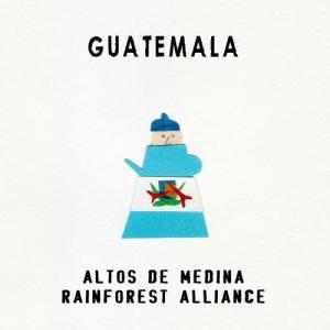 CAFE L'ETOILE DE MERコーヒー豆グァテマラ アルト・デ・メディナ Rainforest Alliance認証 500g pechka